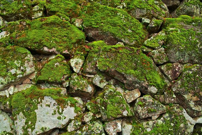 苔が生え朽ち果てた石積み