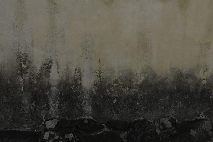下側が黒く劣化した古い外壁