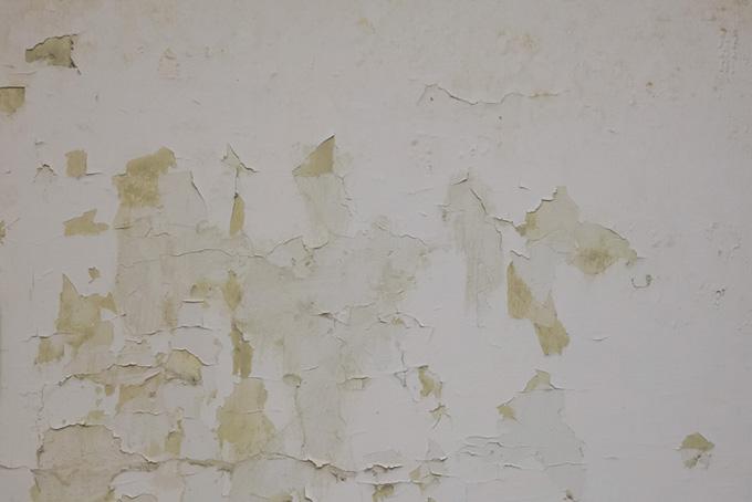 塗装がパリパリに剥がれた壁