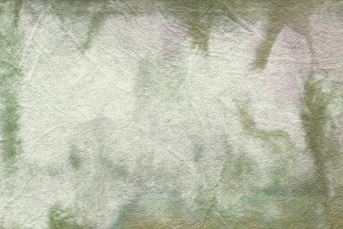 草のような模様がある和紙