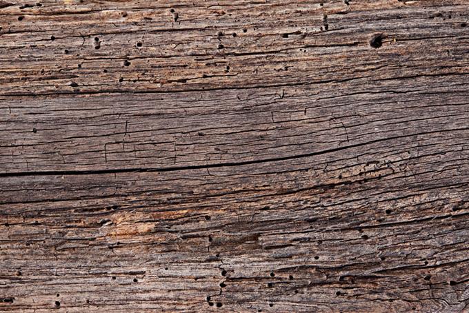 穴やヒビのある木目