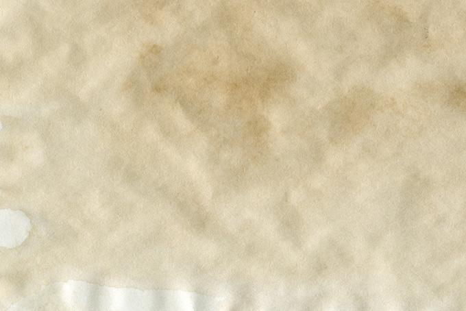 水で劣化した紙の表面