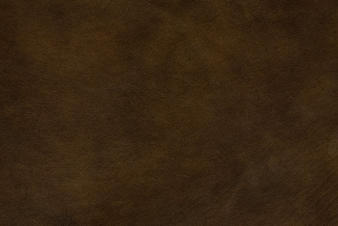 斑のあるダークブラウンの皮