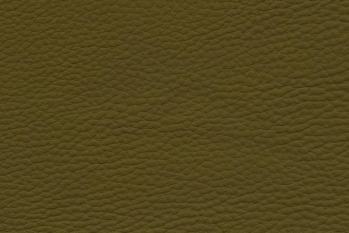 土色の表皮の質感