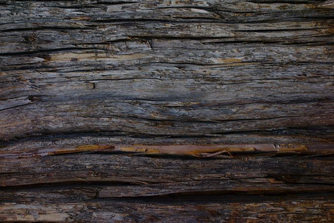 傷のある古い木のテクスチャの背景