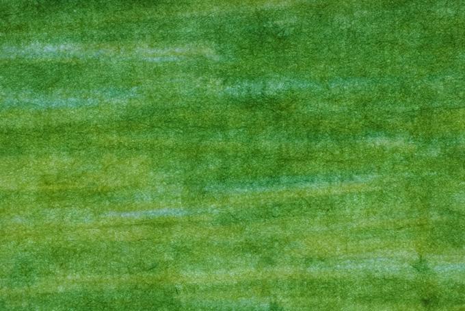 若草色の模様が入った和紙