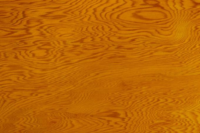 縞模様が美しい老松の木目