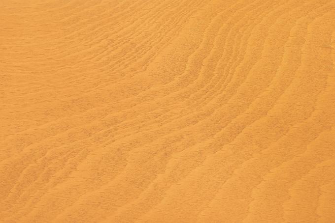木の年輪や木目のテクスチャ、杉板や合板の木目の背景、老松木の木目の画像など、高画質&高解像度の写真素材を無料でダウンロード